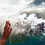 Isbjörn på Zoo