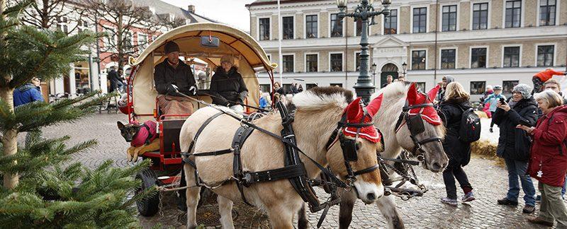 Hästskjuts Vinterlund